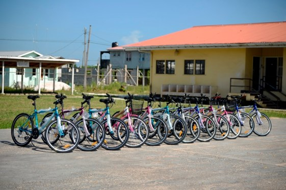 The 12 bicycles on display.