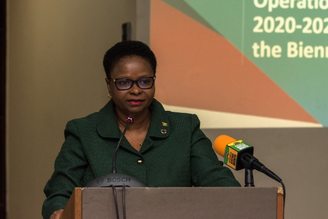 Minister of Public Health, Hon. Volda Lawrence.