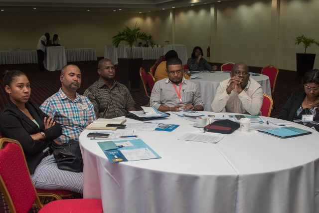 Some of the participants in the meeting to develop a 2020-2021 workplan for the Ministry of Public Health.