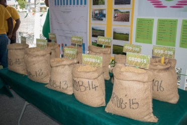 One of the booths displaying their produce at the 'open day' exercise on Thursday.