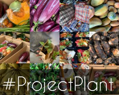 Project Plant 2