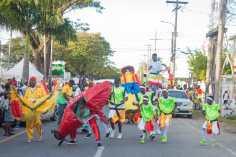 Victoria Renegades Perform at masquerade March in 2019