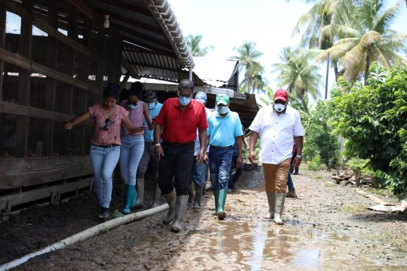 Minister of Agriculture, Hon. Zulfikar Mustapha, assesses flood damage to a farm on the Corentyne Coast during a visit on Sunday, August 9, 2020.