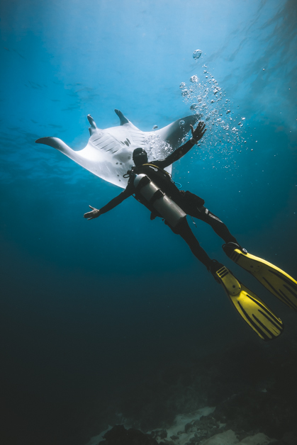 Scuba Diving in Nusa Penida Island