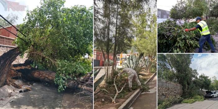 Lluvia atípica provoca caos en Nogales