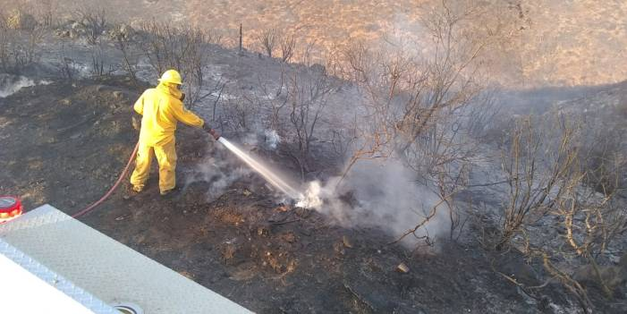 Reportan liquidados incendios en Baja California