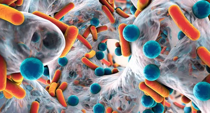 Resistencia antimicrobiana, tan peligrosa como una pandemia: OMS