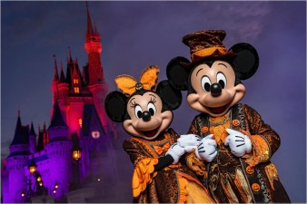 """Eerie lighting, fall décor and Mickey Mouse-shaped Jack-O-Lanterns set the stage at Magic Kingdom for Mickey's Not-So-Scary Halloween Party. The family-friendly after-hours event offers trick-or-treating, meet and greets with favorite characters in costume, plus the must-see """"Mickey's Boo-to-You Halloween Parade"""" and """"Happy HalloWishes"""" fireworks display. Mickey's Not-So-Scary Halloween Party is a special ticket event and takes place on select nights each fall at Walt Disney World Resort in Lake Buena Vista, Fla. (Matt Stroshane, photographer)"""