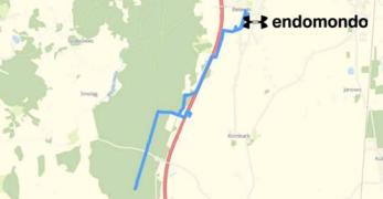trasy w lesie, którymi chodziliśmy