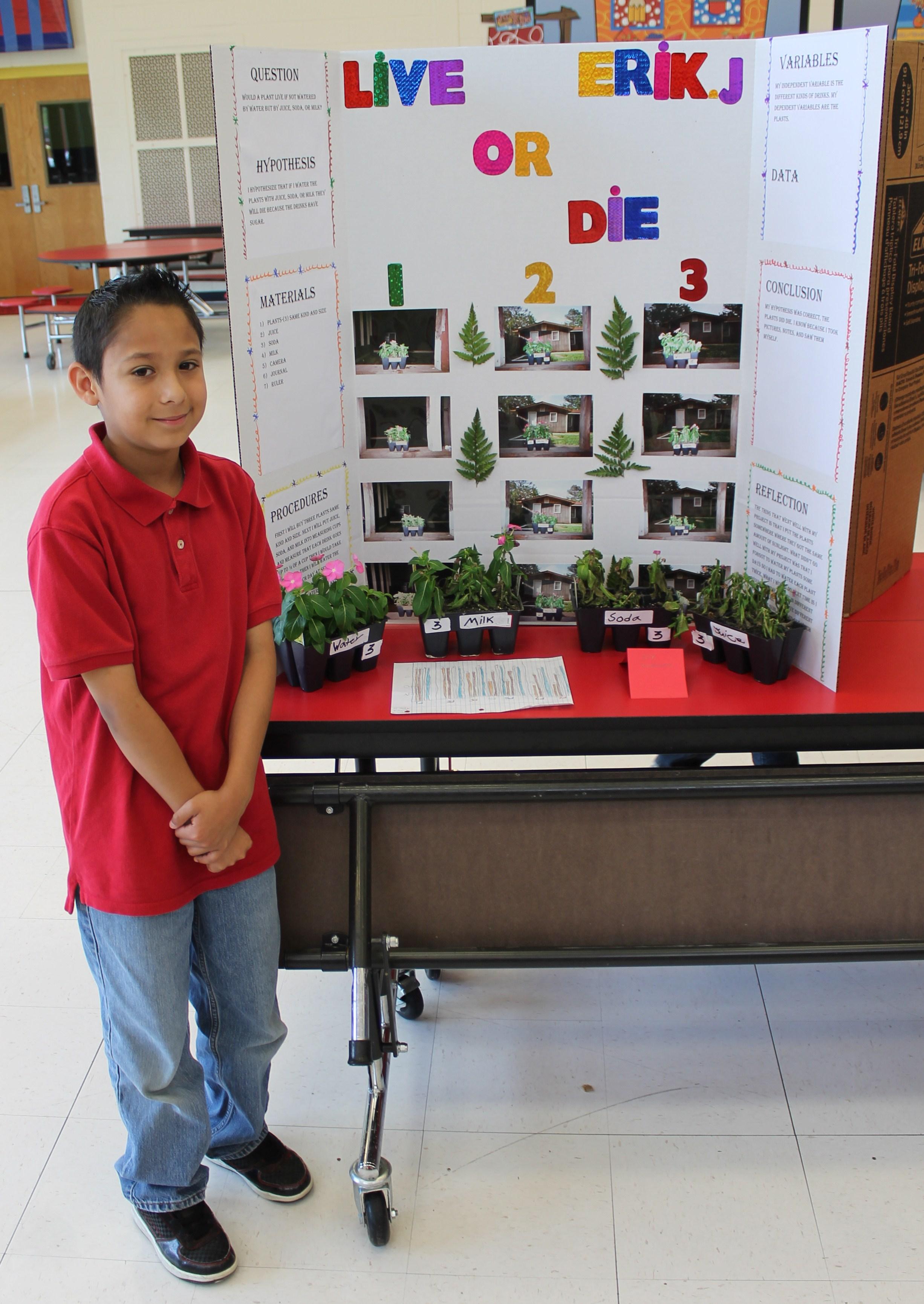 Blue Ridge Holds First Science Fair