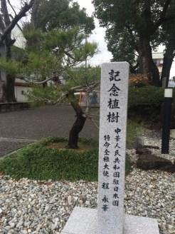 徐福公園中的中國大使的殖樹