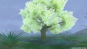 ともしびの木
