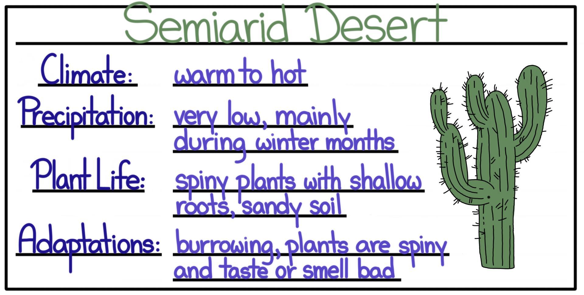 Biomes Desert