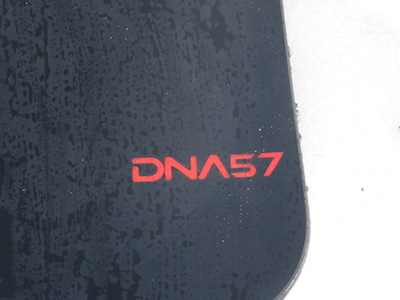 1AMICSS DNA