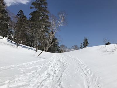 栂池高原 40