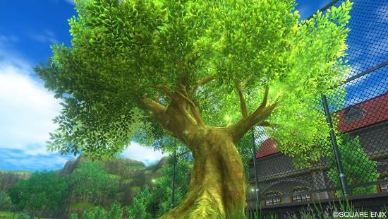 アスフェルド学園 友情の木
