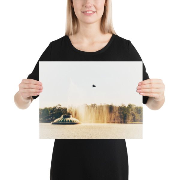 Flying over The Lake Photo paper poster