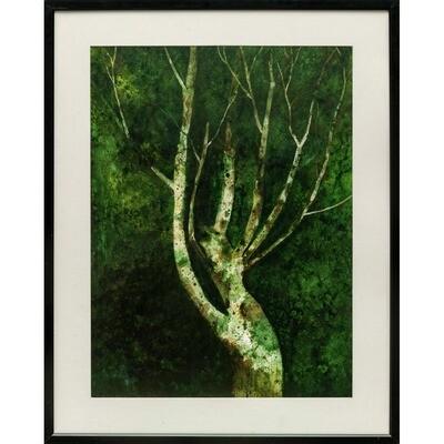 Jerry Baldwin -- Winter Tree