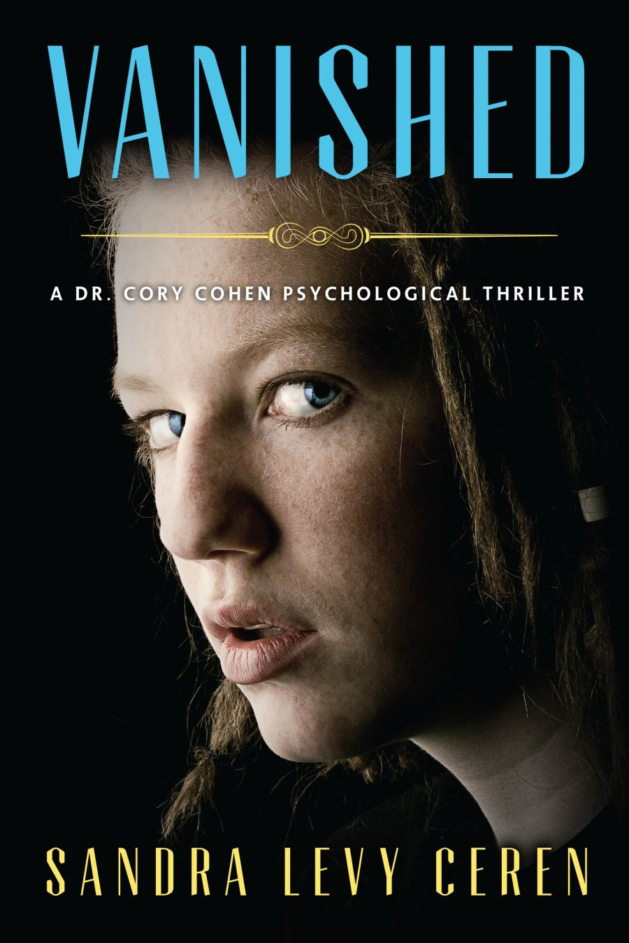 Vanished: A Dr. Cory Cohen Psychological Thriller 978-1-61599-230-0