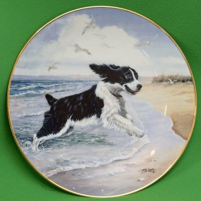 1992 Hamilton Collection Collector Plate, Making Waves By Linda Picken