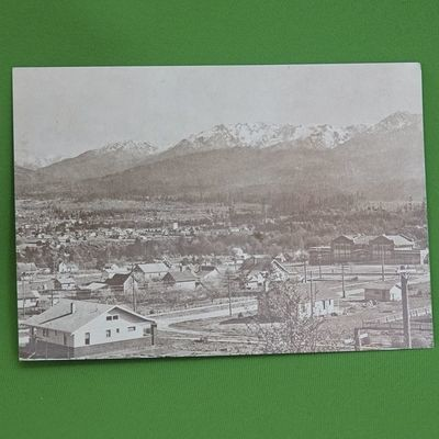 Vintage 5 X 7 Unused Postcard, Old Photo, Residence Area, Port Angeles, WA
