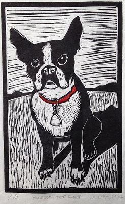 za) Boston Terrier 2 color