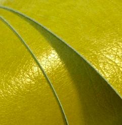 Madeira glanz E336 olive
