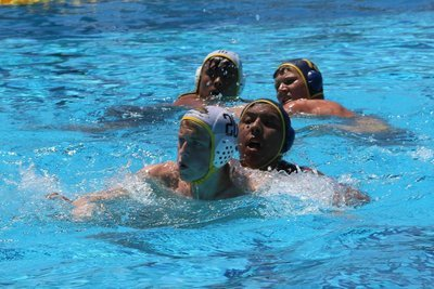 Boys Waterpolo Contribution