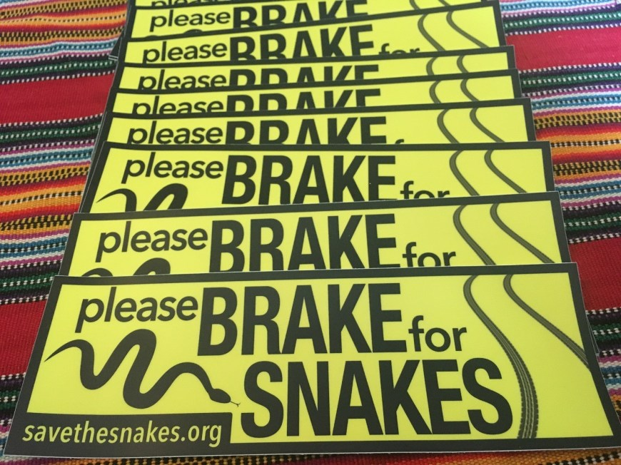 Brake For Snakes Bumper Sticker - HUGE!