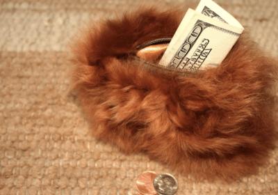 Alpaca Fur Coin Purse