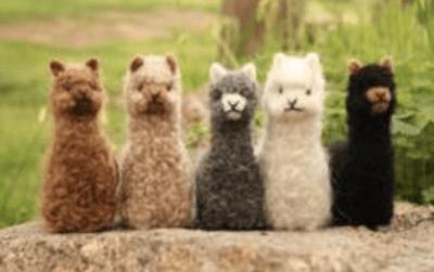 Huacaya Baby Alpaca Ornaments
