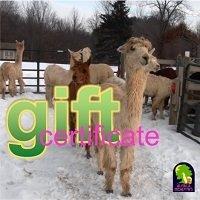 Gift Certificate AMDWS-051101