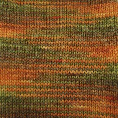 Alpaca and Superwash Wool Sock Yarn  - Harvest Time