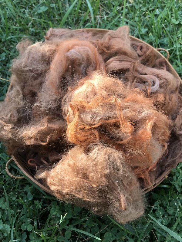 Suri Alpaca Fiber, 6 Inches, Madder Orange, 2 Ounces