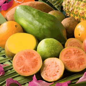 Mango and Papaya Scented Candle