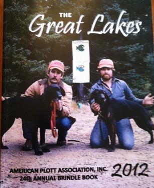 2012 APA Brindle Book