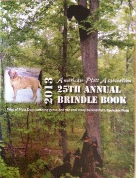 2013 APA Brindle Book