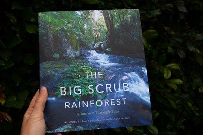 'The Big Scrub Rainforest' Book