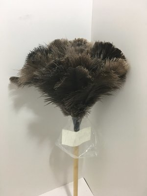 Duster Feather - Ostrich