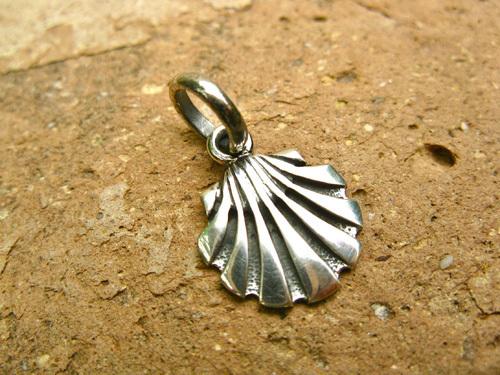Close-up of the scallop shell (concha de vieira in Spanish)