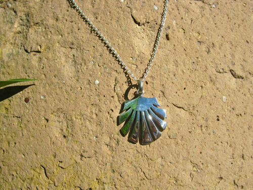 """Camino scallop shell on 20"""" sterling silver belcher chain"""