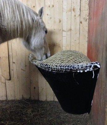 Horse Corner Net B