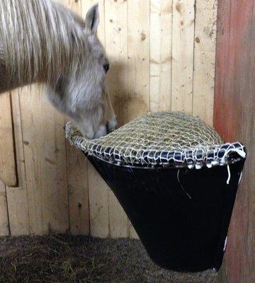 Horse Corner Net E