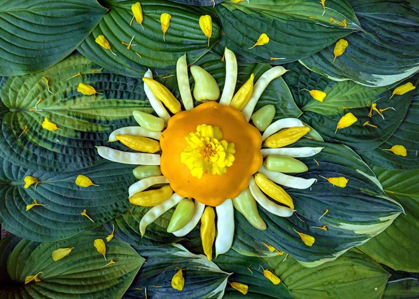 Sol Hot Gogh CV2018112501