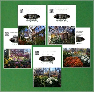 House of Glass: 100th Anniversary Greeting Card Set