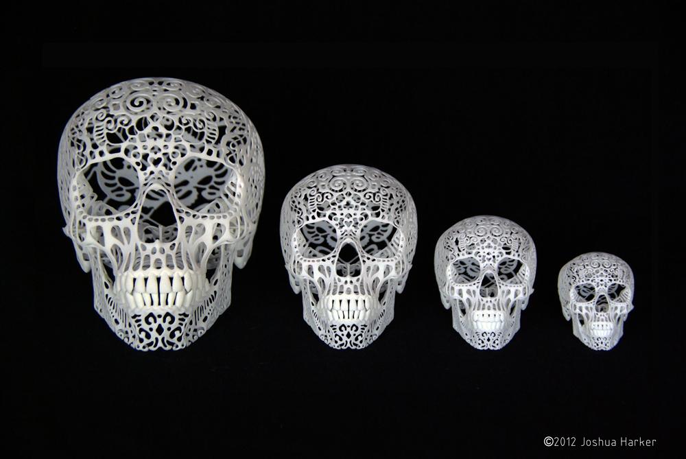 Crania Anatomica Filigre 3d printed skull: size comparison