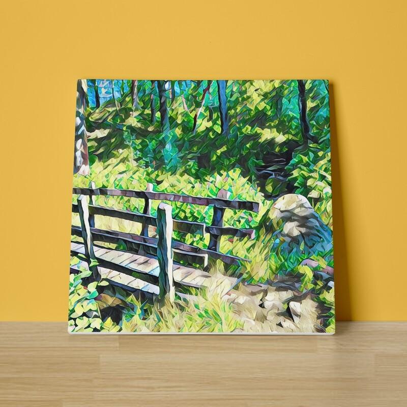 Woodland Footbridge Canvas Print