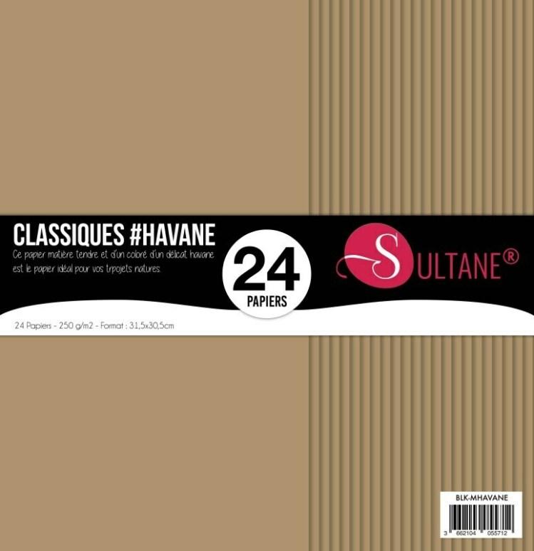 Set 24 papiers scrapbooking - Cardstock Havane - 250g/m2