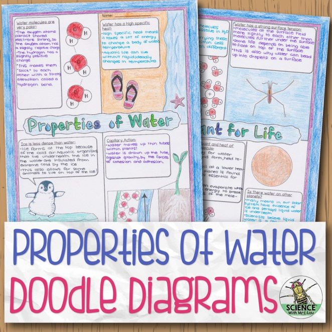 Properties Of Water Doodle Diagrams Unit 2 Biochemistry Dd