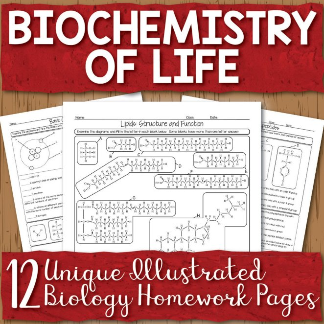 Biochemistry Homework Unit